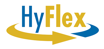 HyFlex Learning Options